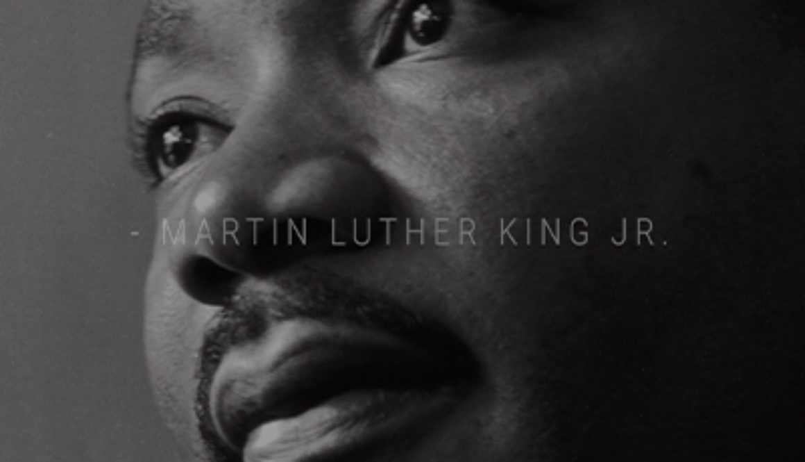 mlk small website photo